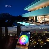 Magic Mini RGB wifi Controller für LED Strip/Streifen Kompatibel mit Alexa, Google Home, IFTTT, IR Fernbedienung Steuerung, 16 Mio Farben, 20 Dynamische Modi - 5
