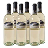 Pinot Grigio del Veneto IGT Weißwein Italien 2017 trocken (6x 0.75 l)