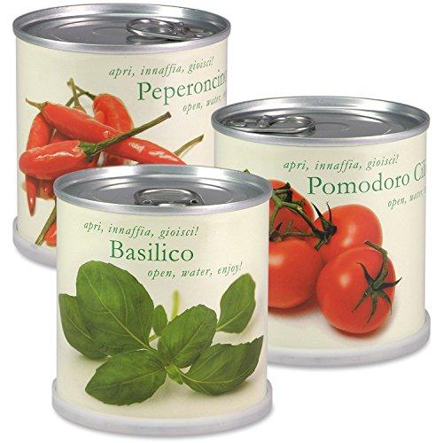 extragifts-fiori-in-lattina-set-3-piante-da-cucina-italiana