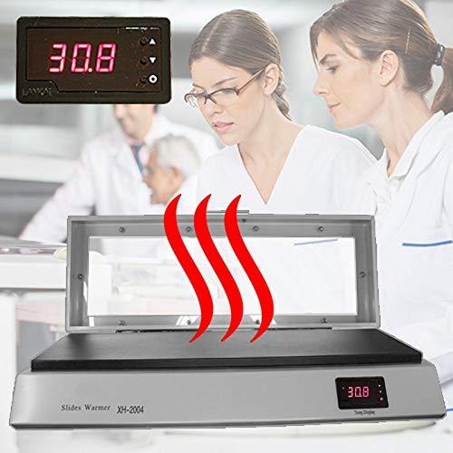 Heizplatte Wärmeplatte Slide Warmer Heating Plate Forschung Labor Praxis HP4-FBA