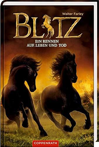 Blitz (Bd. 4): Ein Rennen auf Leben und Tod (Band Schwarze Buch)
