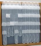 heimtexland 16 cm breite Scheibengardine Clip Panneau modern bestickt Hochraff Gardine in weiß Höhe 145cm individuell raffbar Wunschbreite 2 Lamellen = 16 cm Raff Panneaux Typ440