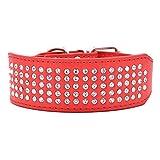 Mochow-Pet Hundehalsband 5 cm Breit Für Große Hunde Aus PU Leder Mit Bling Leuchtend Strass Einstellbar Rot Größe M