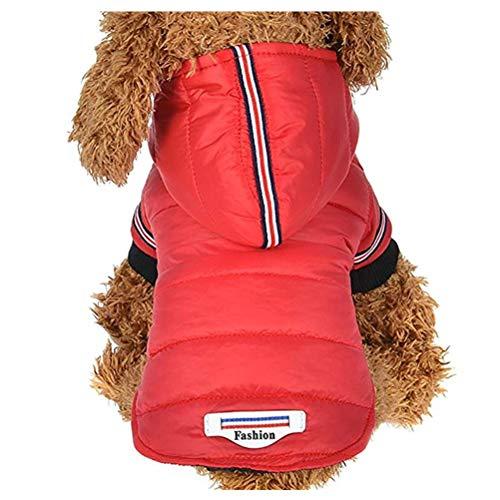 Hunde Kleine Bumble Kostüm Bee - WANDER EU Nette kleine Haustier-Hundekleidung-reizende Welpen-Kleidung-Herbst-Winter-warme Kleidungs-Strickjacke-Kostüm-Jacken-Mantel-Kleid für gehendes Rütteln (rot, L)