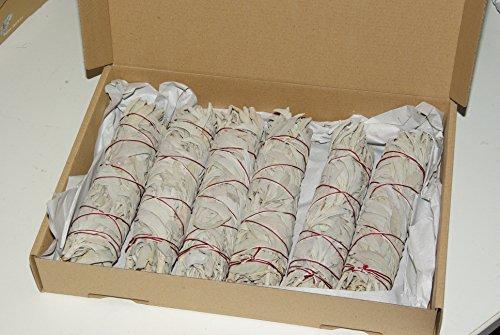 6 Stück XL Salbei-Stäbe / Bündel (je 45-50 gr.) von Native-Spirit.eu -- ~20-21 cm (7-8 Inch) white sage (Räucherbündel Salbei)