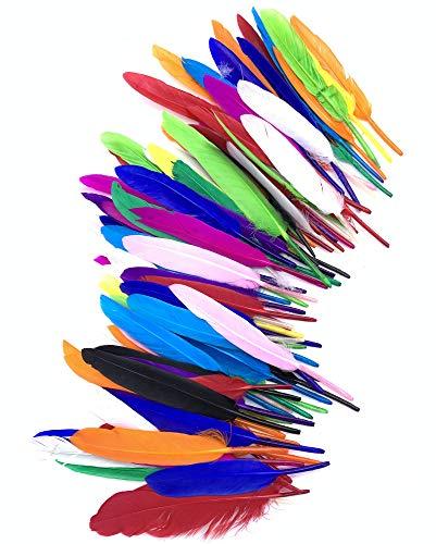 Alle Kostüm Weiße Indianer - ERGEOB Gans Federn 100 stück Naturfedern 10-15cm/4-6 Zoll Länge für Art Design Basteln Karneval Rosen Montag Halloween Fest Versch. Farben