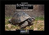 Faszination Schildkröten: Ein Bildband. Herausgegeben von Thorsten Geier