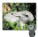 Yanteng Tappetino per mouse e tappetino in gomma naturale Roger con bordi cuciti; un coniglio grigio seduto sull'erba in una gabbia di legno
