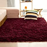 #7: 40*60cm , Wine Red : ALCYONEUS Soft Rug Home Living Room Bedroom Floor Carpet Mat Soft Anti-Skid Rectangle Area Rug size 40*60cm (Wine Red)