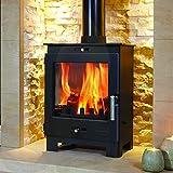 Flavel Arundel 4.9kw Multifuel Wood Burning Stove