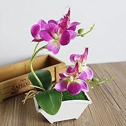 asdomo Künstliche Schmetterling Orchidee Blume Blätter mit Blumentopf Home Decor Fake Blume violett