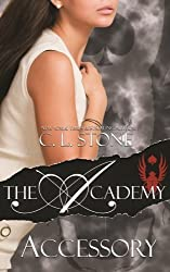 The Academy - Accessory: Volume 4 (The Scarab Beetle Series) by C. L. Stone (2015-08-25)