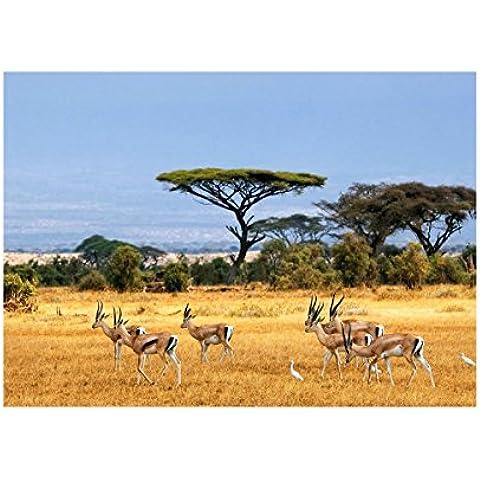 Safari Kenya, Poster di Carta Manifesto Cartellone Design Art Foto Deco Print Immagine con Disegno Colorato. Dimensione: A5, 148 x 210 mm