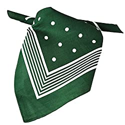 Green With White Stripes & Polka Dot Bandana Neckerchief from Ties Planet