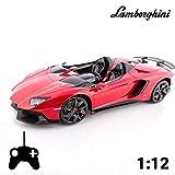 Lamborghini Aventador J ferngesteuertes Auto