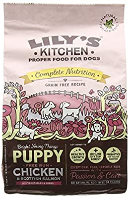 Lily's Kitchen Puppy Chicken and Salmon Complete Dry Dog Food (1 kg) from Lily's Kitchen