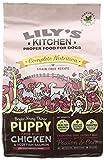 Lily's Kitchen Puppy Chicken & Salmon Complete...