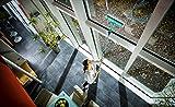 Leifheit 51320 Fensterwischer Plus 3 Vergleich