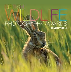 British Wildlife Photography Awards: Collection 4