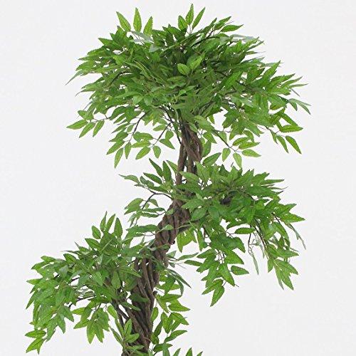 Stilvoller künstlicher Baum & Pflanzen, Der Japanese Fruticosa Tree ist eine wunderschöner künstliche Pflanze für Büros und Innendekorationen Höhe: 165cm groß. Pflanzen für einen Wintergarten - 3