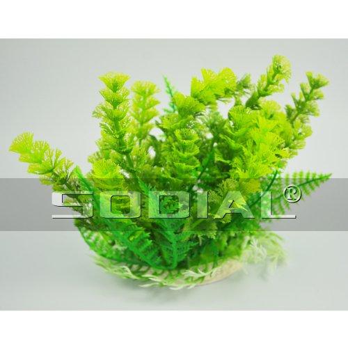 SODIAL (R) Erba Piante Decorazione di plastica verde Acquario 6.7