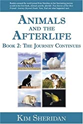 Before and Afterlife: The Compelling Journey of a Life That Never Ends