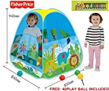 Fisher-price Houses