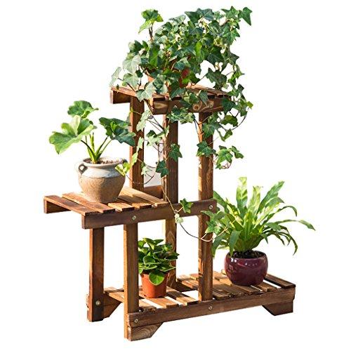 fleurs plante terrasse. Black Bedroom Furniture Sets. Home Design Ideas