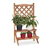 Relaxdays Blumentreppe mit Rankgitter, 2 Stufen, für Blumentöpfe & Kletterpflanzen, Tannenholz, HBT: 110x61x40cm, Natur