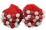 origin-AL Home & Style 10 Stück Haarreifen Haarschmuck Brautschmuck - Kina Polterabend Tac Nedime Taci Henna Abend Brautjungfer Kranz Gecesi Nikah Söz (Rot)