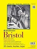 Strathmore 300Series Bristol Board Vellum Oberfläche Paper Pad (48,3x 61cm) ideal für Graphit Bleistift, farbige Bleistift, Kohle, skizzieren Stick, Stift & Tinte, Marker, Mischtechnik, Collage