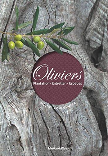 oliviers-plantation-entretiens-espces