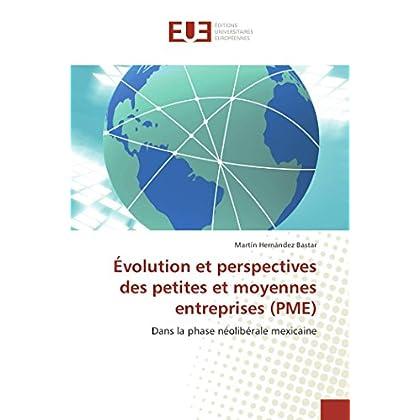 Évolution et perspectives des petites et moyennes entreprises (pme)