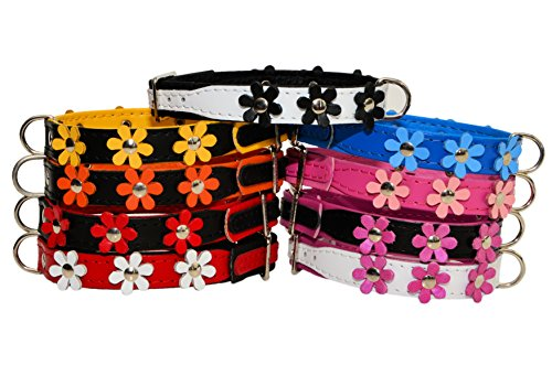 """ZOOLESZCZ LEATHER DOG COLLAR FLOWER Designer DAISY COLOUR PADDED Handmade RED with BLACK lining and WHITE FLOWER (10"""" 1.2cm wide/ 25cm long) 2"""