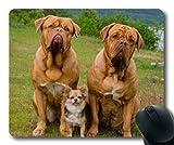 Gaming-Mäusematte, Hot Dog Dog odkvitnute pupavy, Präzisionsnaht, strapazierfähiges Mauspad