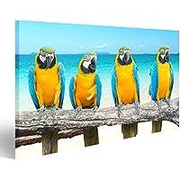 Cuadro Cuadros Cuatro loros guacamayo azul y oro hermosa playa tropical y el mar Impresión sobre lienzo - Formato Grande - Cuadros modernos