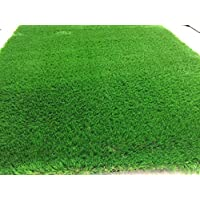 Artificial Grass 50 mm (size : 4 x 6 M) ONLY 24 SM2