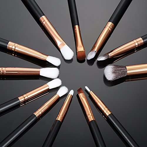 12 Pcs Professional Makeup Brushes Set for Eyeshadow Foundadtion Eyeliner Lips and More (Black)