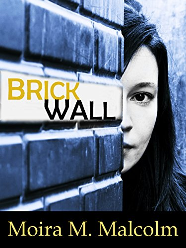 BRICK WALL: How an Architecture Student was reduced to rubble
