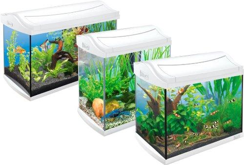 Tetra-AquaArt-Discovery-Line-Aquarium-Komplett-Set-wei-inklusive-Tetra-EasyCrystal-FilterBox-und-Aquarienheizer-ideal-fr-die-Haltung-von-Garnelen-Krebse-oder-tropischen-Zierfische-verschiedene-Gren