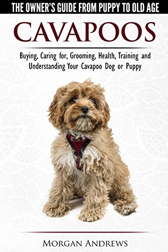 Cavapoos - The Owner\'s Guide From Puppy To Old Age - Buying, Caring for, Grooming, Health, Training and Understanding Your Cavapoo Dog or Puppy (English Edition)