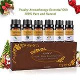 VSADEY Aceites Esenciales Aromaterapia Humidificador Essential Oils Set 6 x 10ml 100% Puro y Naturales (Naranja Dulce, Lavanda, Arból de Té, Menta, Limoncillo, Eucalipto) Nueva Formula
