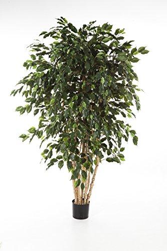 artplants Deko-Ficus DAREL, mehrstämmig, 3465 Blätter, grün, 210 cm – Deko Pflanze/Ficus künstlich