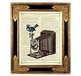 Vogel Fotoapparat Kamera Steampunk Kunstdruck auf viktorianischer Buchseite Geschenk Bild Poster ungerahmt