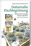 Naturnahe Dachbegrünung: Kreative Ideen für Garage, Carport, Laube & Co. Planen Bauen Bepflanzen von Brigitte Kleinod (15. Mai 2012) Gebundene Ausgabe