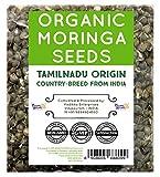 NumNum Superfoods® 500 Gms Organic Moringa Seeds (Tamilnadu Country breed Variety) High therapeutic values - Moringa Oleifera Seeds - Dried Drumstick Kernels - Wingless Moringa Tree Seeds