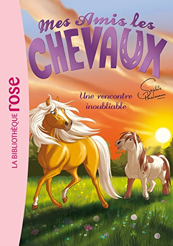 Mes amis les chevaux, tome 6 : Une rencontre inoubliable par Sophie Thalmann