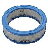 Briggs and Stratton 394018S - Cartucho para filtro de aire