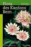 Flora des Kantons Bern: Vom Jura zum Jungfraumassiv - 2000 Blüten- und Farnpflanzen - Konrad Lauber
