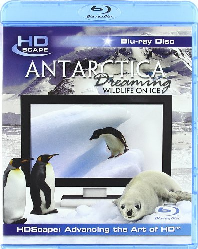 antarctica-dreaming-wildlife-on-ice-blu-ray-2005-2008-region-free